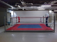 Boxing ring on elevation 20cm